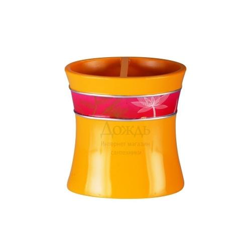 Купить Primanova Stanley D-18222 в интернет-магазине Дождь