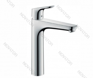 Hansgrohe Focus 190 31608000